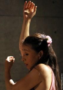 Yumi Fujitani