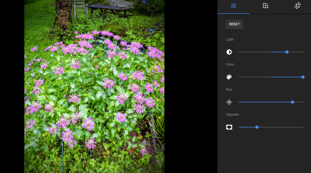 Google + edit box for a photo
