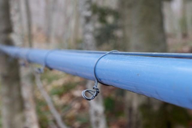 Maple Pipe Line, Alan Levine