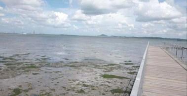 Eternal 888 at Pulau Ubin 10