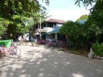 Eternal 888 at Pulau Ubin 4