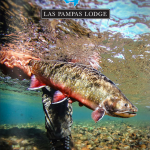 2015 Las Pampas Lodge Catalog _cover