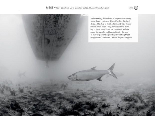 FlyFish Journal_7.1_00004