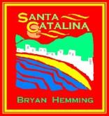 Santa Cat book copy