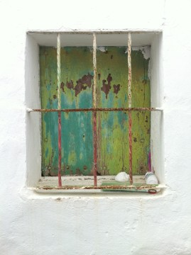 Window barrio flores