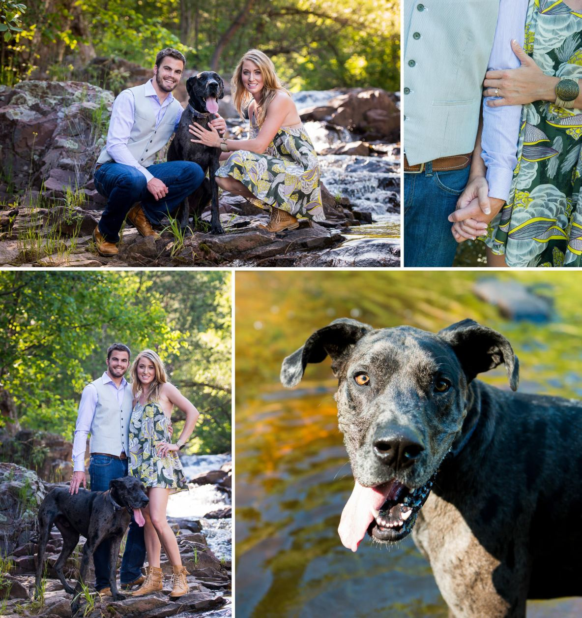 Engagement photos with Great Dane