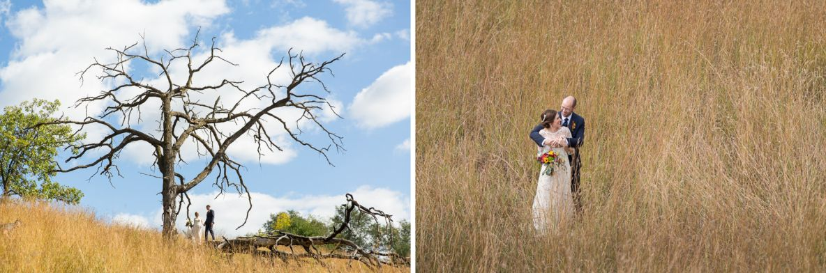 Bride and groom photos outside in nature with long grass and tree in background.
