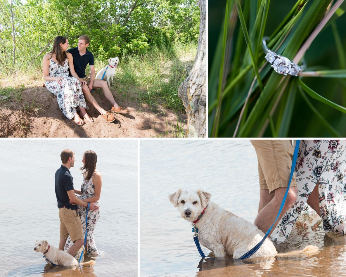 Photos of the engaged couple and dog on the beach and in the water.