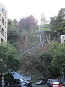 Filbert Street Steps 6