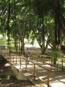 Campus of University of Dar es Salaam