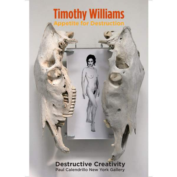 Timothy Williams one man show book