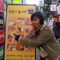 Winter in Seoul – Day 2: Cat Café in Myeongdong