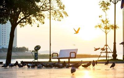Morning on the Riverside in Phnom Penh