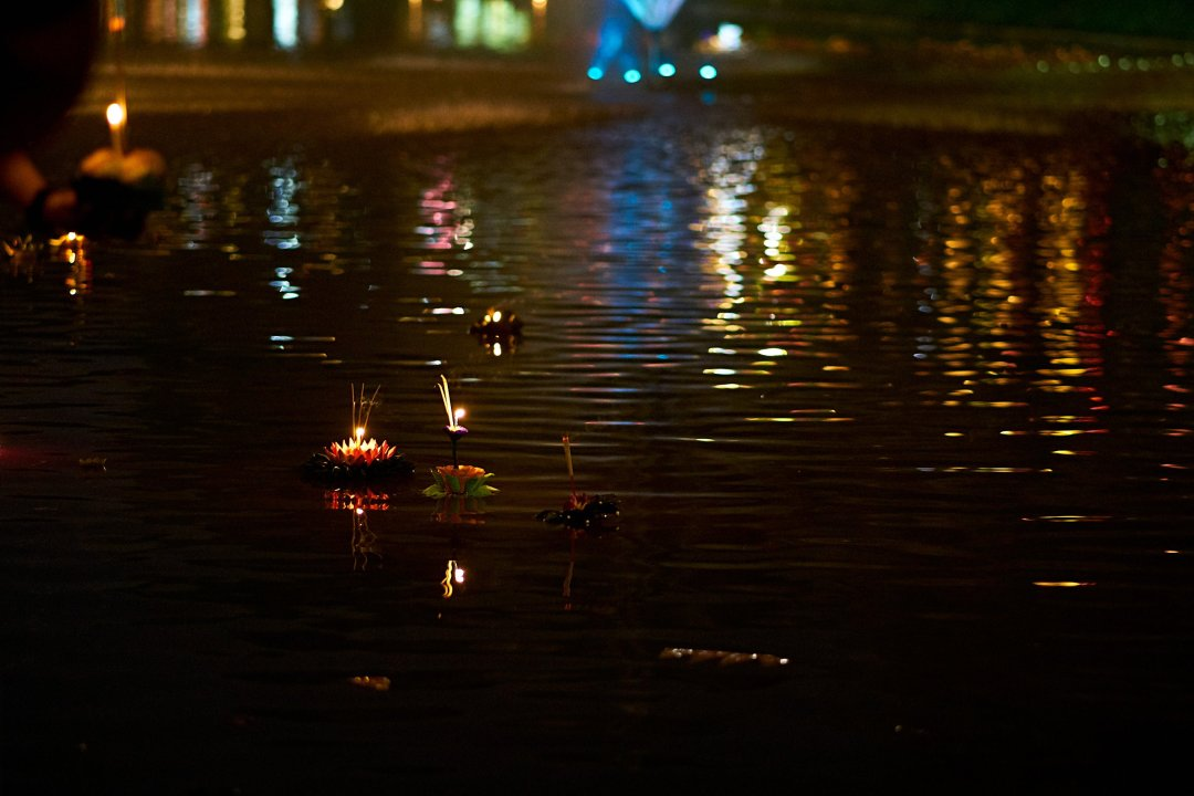 Photo of Krathongs floating on the moat in Chiang Mai, Thailand during the Loi Krathong festival on November 11, 2019 by photographer Bryon Lippincott