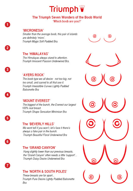 Boob Chart : chart, Varieties, Breasts, Combination, Feeding, Facts, Bryony, Perfectly, Imperfect