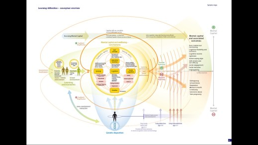Learning difficulties - conceptual overview