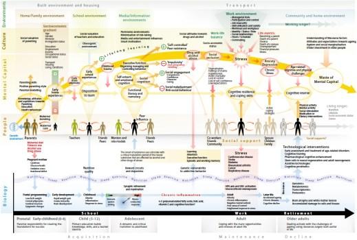 mental_map