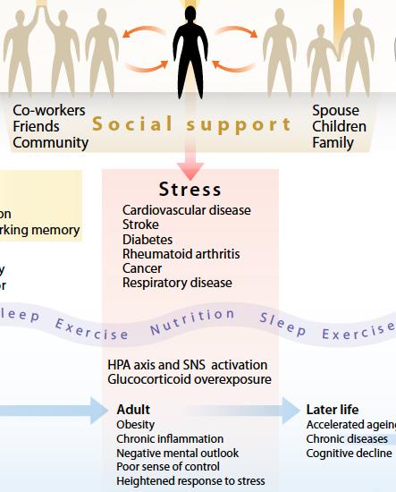 stress_2
