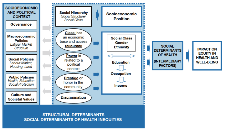 A Conceptual Framework For Action On The Social Determinants Of