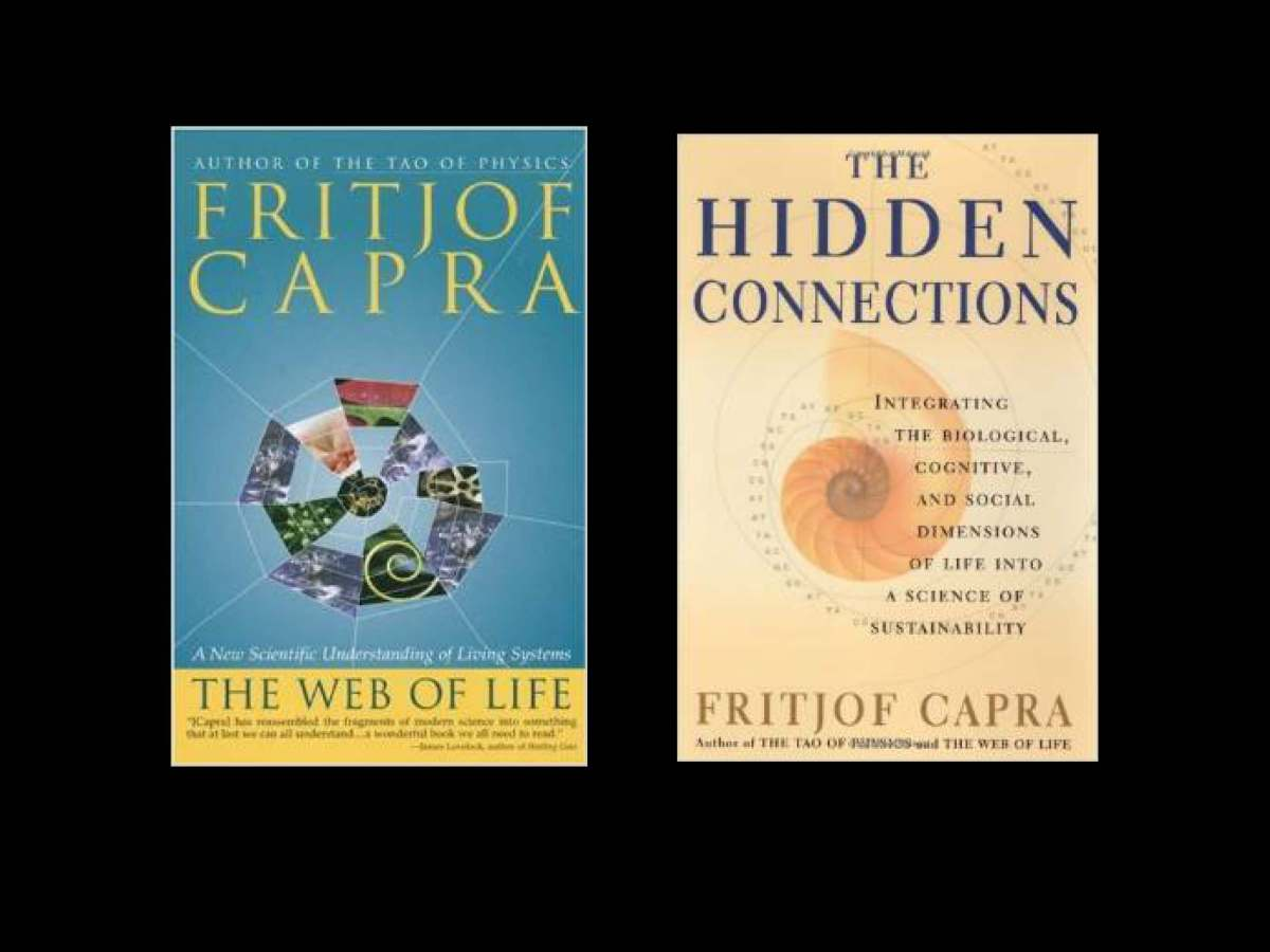 Fritjof_Capra_The-systems-view-of life_I_Page_02