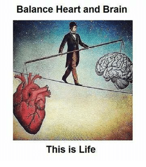 balance-heart-and-brain-this-is-life-24601054