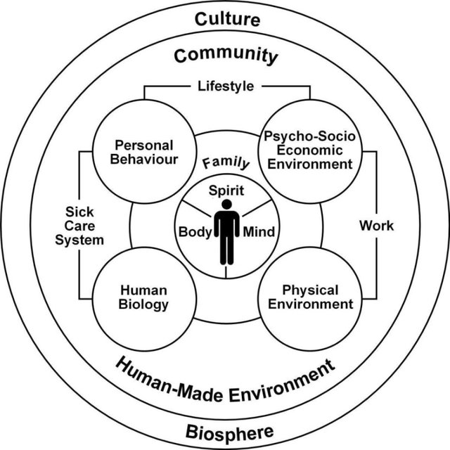 The Mandala Of Health A Model Of The Human Ecosystem