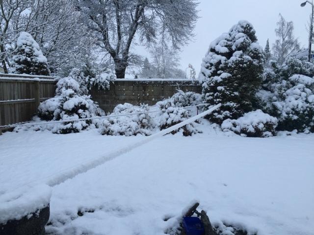 大雪の日はもちろん!