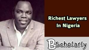 Richest SAN in Nigeria
