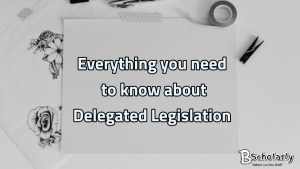 Arguments against delegated legislation