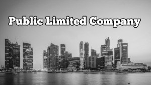 meaning and Differences Between private and public limited company
