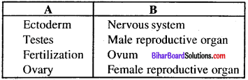 Bihar Board 12th Biology Model Question Paper 1 in English Medium 3