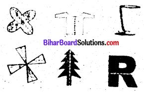 Bihar Board Class 6 Maths Solutions Chapter 14 सममिति Ex 14.1 Q2.1