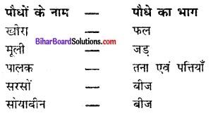 Bihar Board Class 6 Science Solutions Chapter 1 भोजन कहाँ से आता है 1