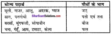 Bihar Board Class 6 Science Solutions Chapter 1 भोजन कहाँ से आता है 4