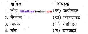 Bihar Board Class 8 Social Science Geography Solutions Chapter 1C खनिज संसाधन 1
