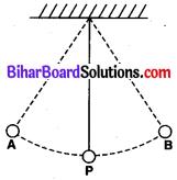 Bihar Board Class 9 Science Solutions Chapter 11 कार्य तथा ऊर्जा