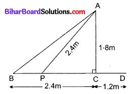 Bihar Board Class 10 Maths Solutions Chapter 6 त्रिभुज Ex 6.6 Q10.1