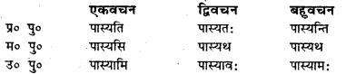 Bihar Board Class 7 Sanskrit व्याकरण धातु-रूपाणि 3