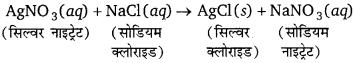 Bihar Board Class 10 Science Solutions Chapter 1 रासायनिक अभिक्रियाएँ एवं समीकरण