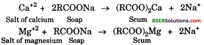 Bihar Board Class 10 Science Solutions Chapter 4 Carbon and its Compounds - 17