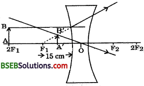 Bihar Board Class 10 Science Solutions Chapter 10 Light Reflection and Refraction - 5