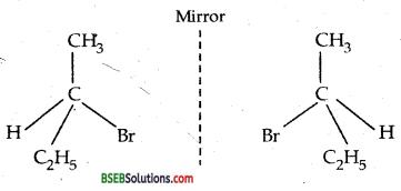 Bihar Board Class 12 Chemistry Solutions Chapter 10 Haloalkanes and Haloarenes 22