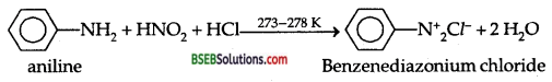 Bihar Board Class 12 Chemistry Solutions Chapter 13 Amines 42