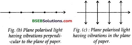 Bihar Board Class 12th Physics Solutions Chapter 10 Wave Optics 19