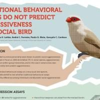 Como criar um poster para conferências e congressos