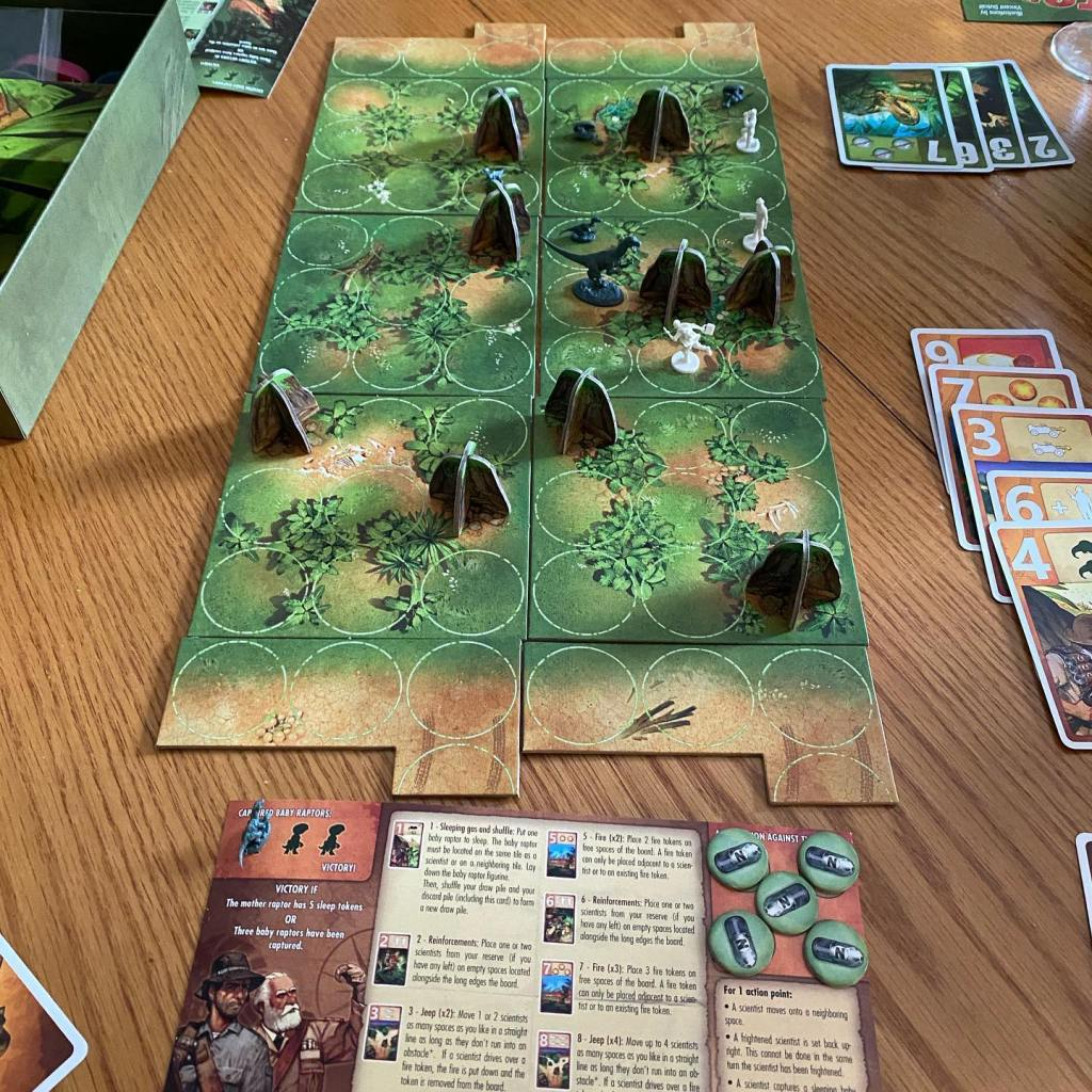 Raptor game in progress