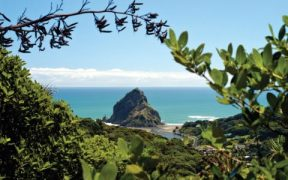 how a solo trip to new zealand changed one writers view of her future 1