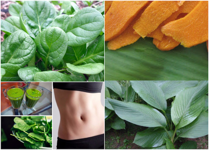 Best Leafy Green Vegetables to Boost Weight Loss