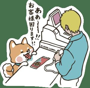 4645-ミキお客様犬-1