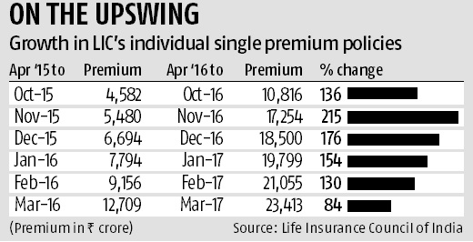 LIC gets lion's share of single premium policies